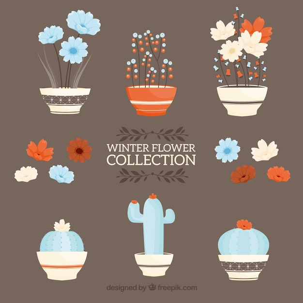 Hand drawn collection of winter flowers in\ flower pots