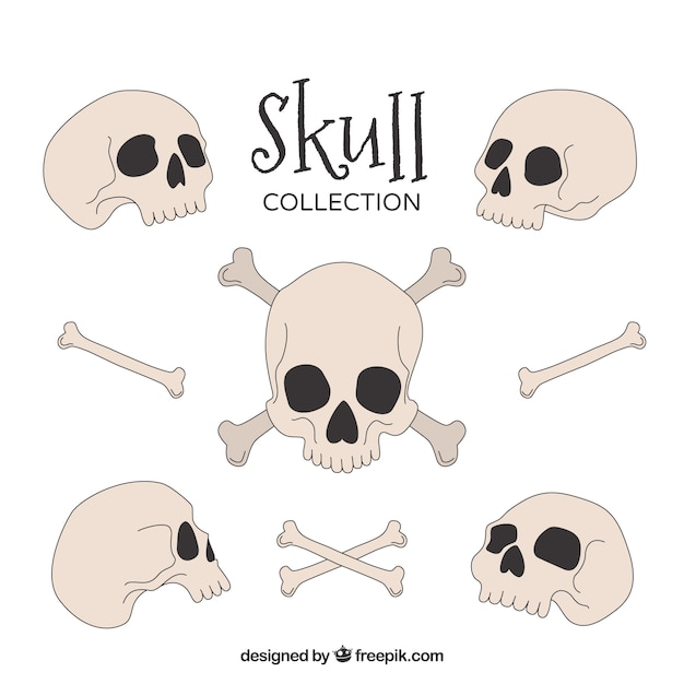 Hand-drawn collection of skulls and bones Free Vector