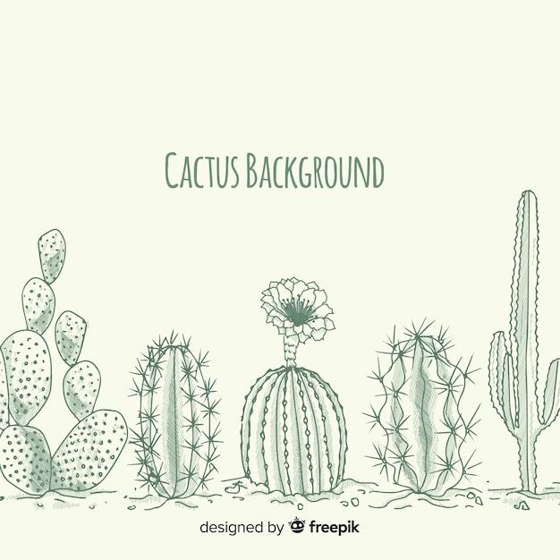 Hand drawn colorless cactus background Premium Vector
