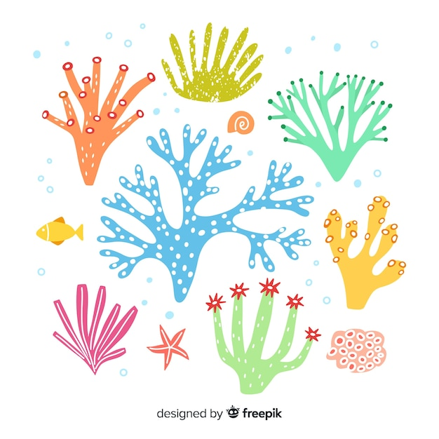 Hand drawn coral collection Vector | Free Download