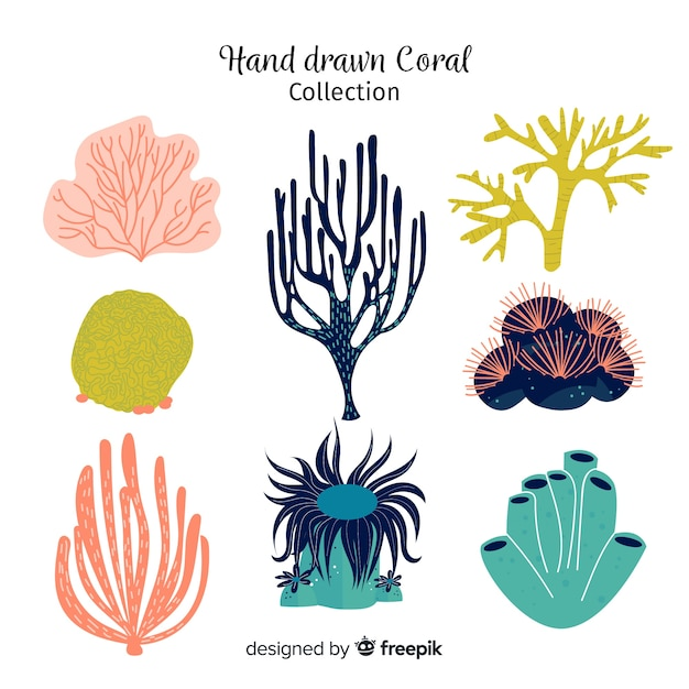 Hand drawn coral collection Free Vector