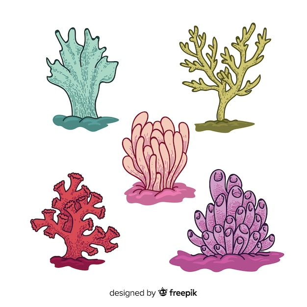 Hand drawn coral collection | Free Vector