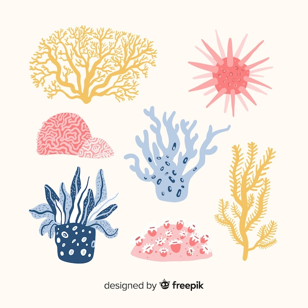 Hand drawn coral pack Vector | Free Download