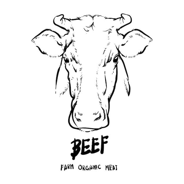 hand drawn cows head outline vector premium download