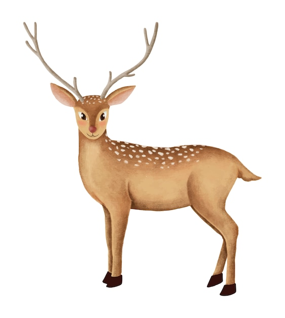 Fallow Deer Vectors Photos And Psd Files Free Download