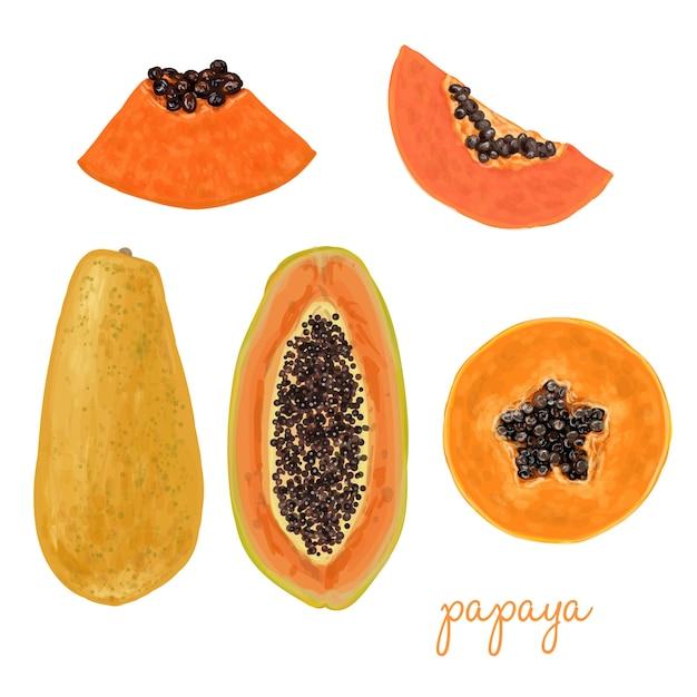 Рисованной вкусно папайя Бесплатные векторы
