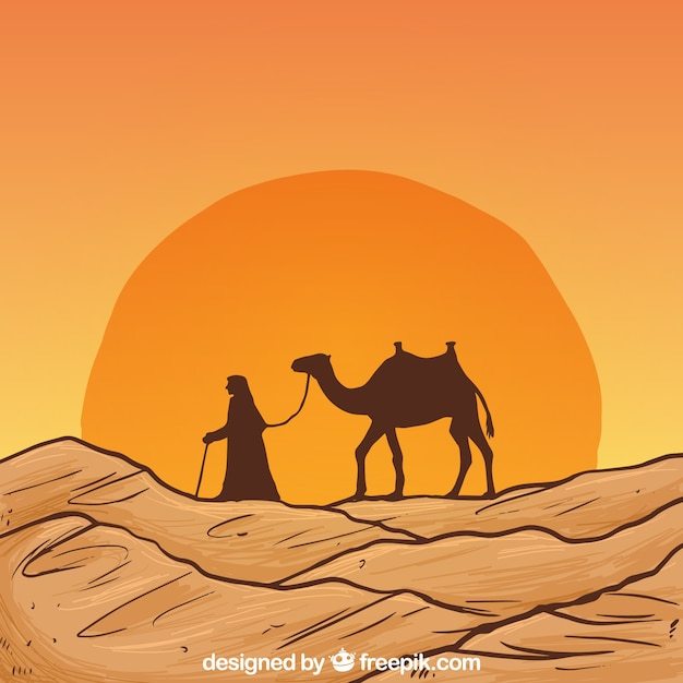Camel Vectors, Photos and PSD files | Free Download
