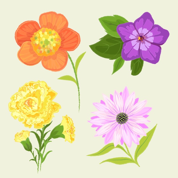 Hand drawn design spring flower collection Free Vector