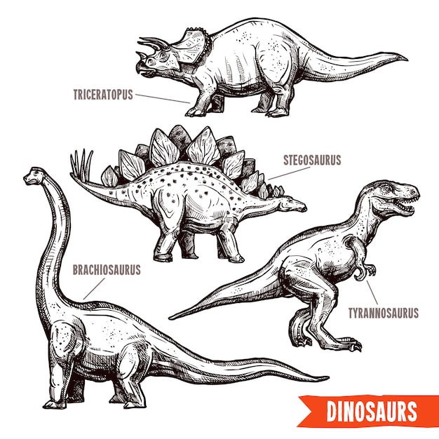 Hand drawn dinosaurs set black doodle Free Vector