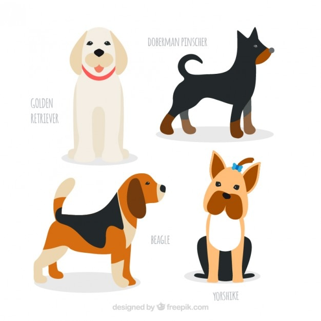 Hand drawn dog breeds pack