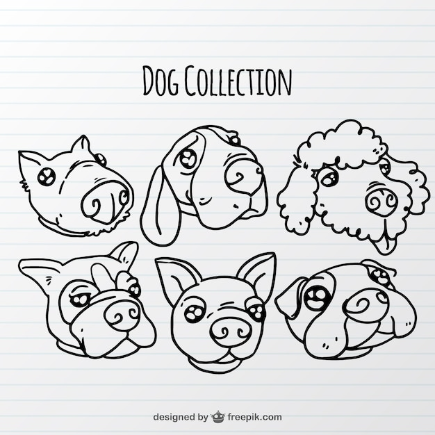 Hand-drawn dog collection