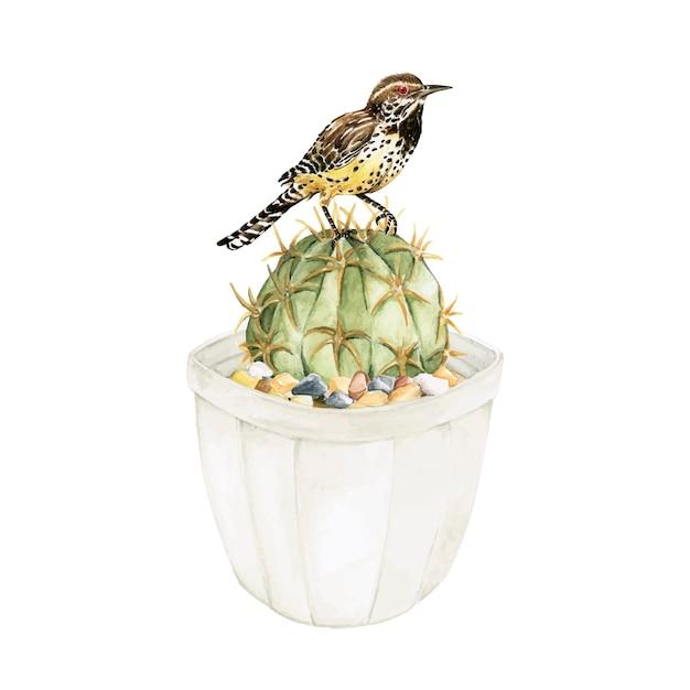 Hand drawn echinopsis calochlora cactus and a bird Free Vector