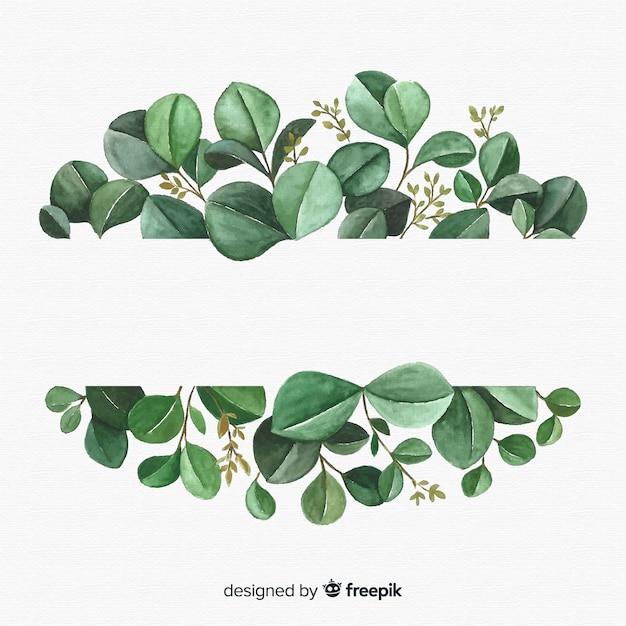 手描きのユーカリの葉の背景 Premiumベクター