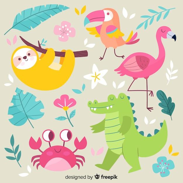 Коллекция рисованной экзотических животных Бесплатные векторы