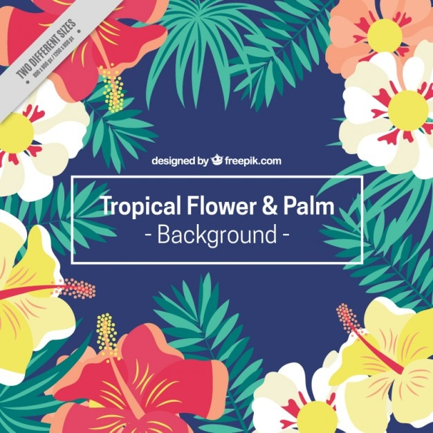 Hand drawn exotic flowers and palm leaves\ background