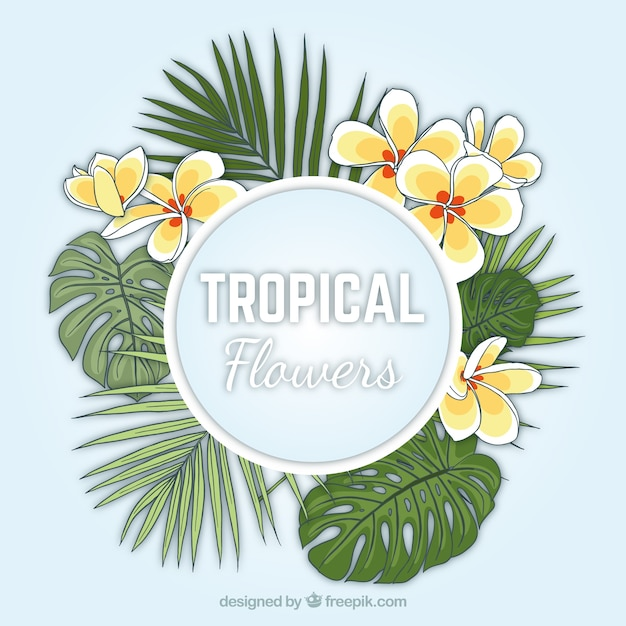 Hand drawn exotic flowers with palm leaves\ background
