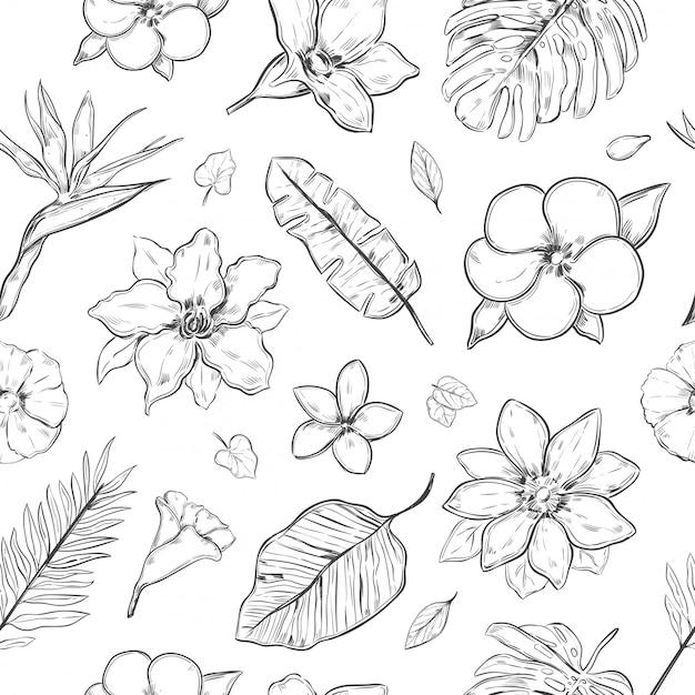 Рука нарисованные экзотические растения бесшовный фон Бесплатные векторы