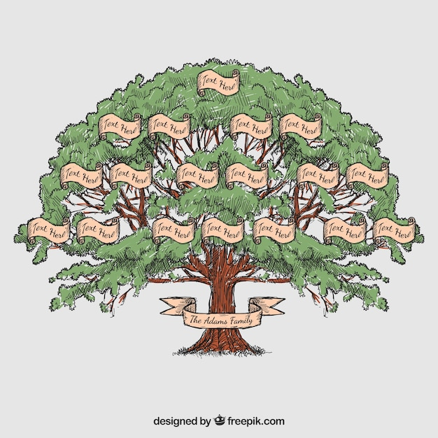 Hand drawn family tree Vector | Premium Download