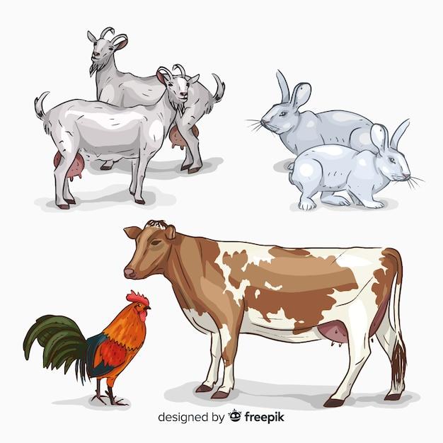 Коллекция рисованной сельскохозяйственных животных Premium векторы