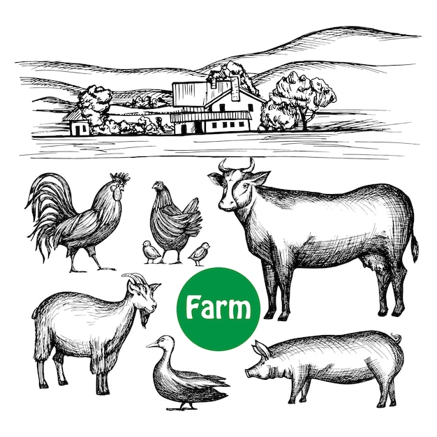 Hand drawn farm set Free Vector