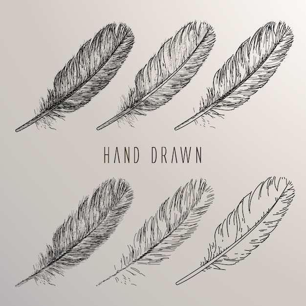 Hand drawn feather collection Free Vector