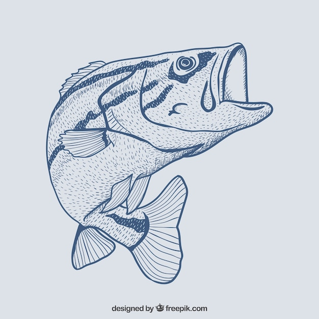 Hand drawn fish Free Vector