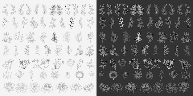 Hand drawn floral elements vector Premium Vector