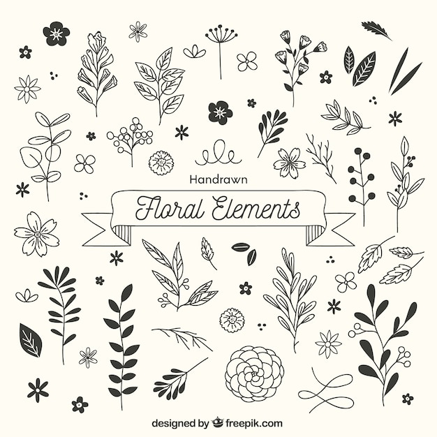 Hand drawn floral elements with sketchy style Free Vector