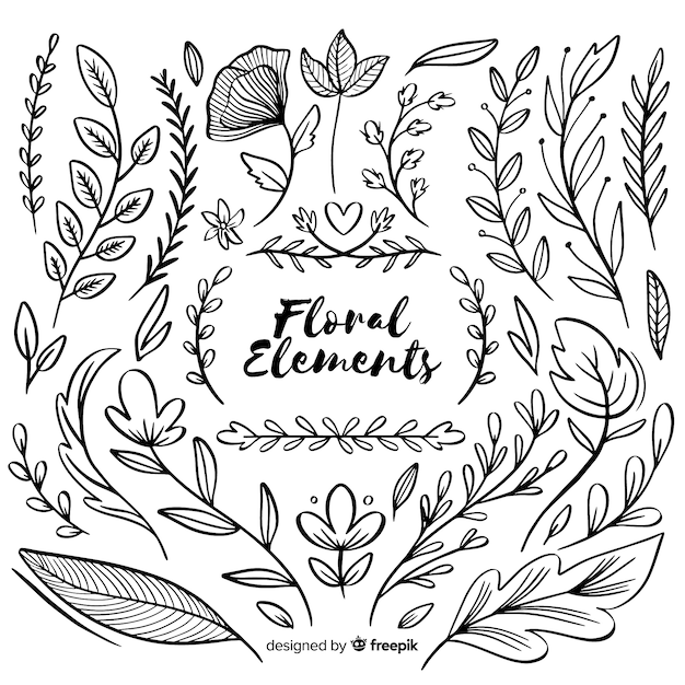 Hand drawn floral ornamental elements Free Vector