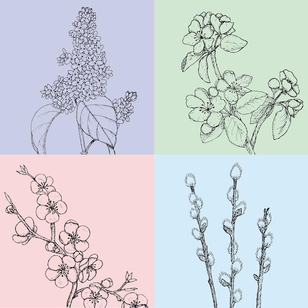 植物の自然に咲くリンゴの桜の柳とライラックの枝と手描きの花の春のイラスト 無料ベクター