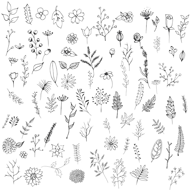 Hand drawn flowers collection Free Vector