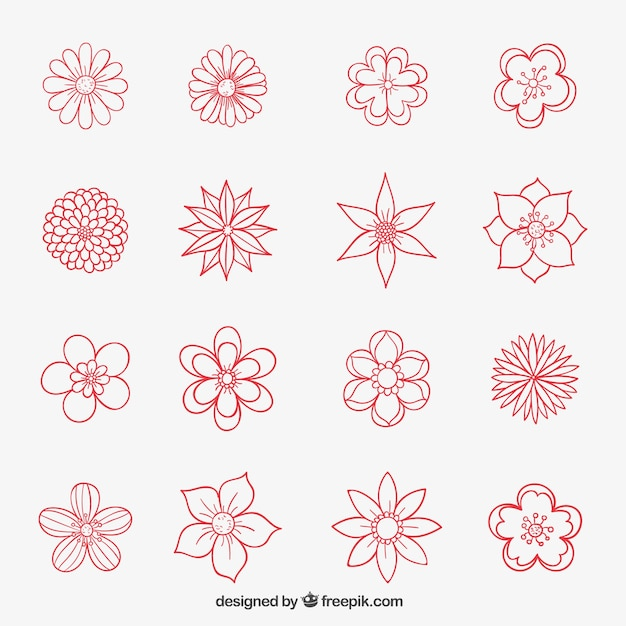 Hand drawn flowers collection vector free download hand drawn flowers collection free vector mightylinksfo