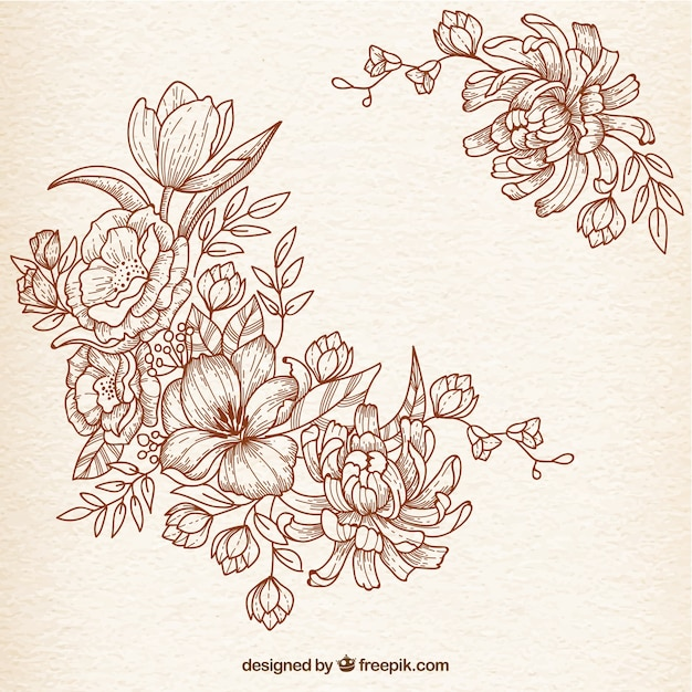 Flower Line Drawing Vintage : Hand drawn flowers in retro style vector free download