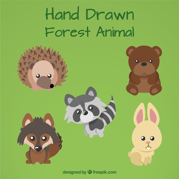 Hand drawn forest animal with cute eyes