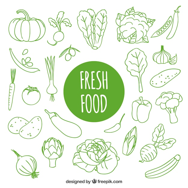 Hand drawn fresh food Free Vector