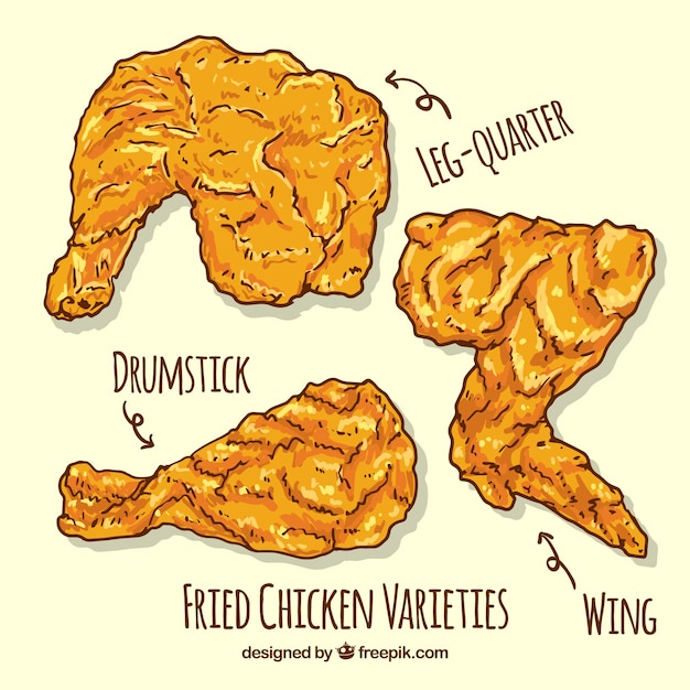 Hand-drawn fried chicken pieces