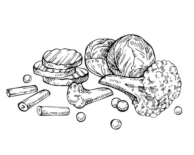 Вручите оттянутые замороженные смешанные овощи с горохом, брокколи, цветной капустой, горохом, брюссельской капустой и морковью. эскиз микс из овощей Premium векторы