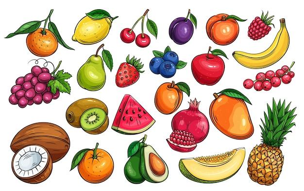 手描きのフルーツとベリーのアイコンセット Premiumベクター