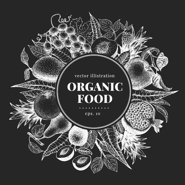 Hand drawn fruit and berry. vector illustrations on chalk board. vintage Premium Vector
