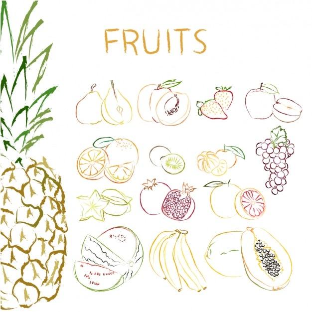 Коллекция рисованной фрукты Бесплатные векторы