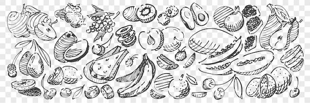 Рисованной фрукты каракули набор Premium векторы