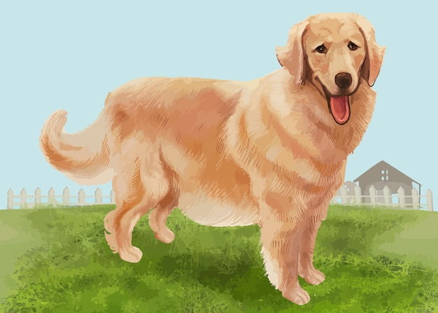 Hand drawn golden retriever Free Vector