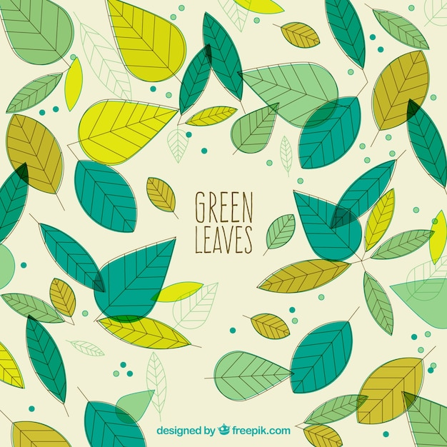 Download Vector - Hand drawn green leaves beautiful background ...