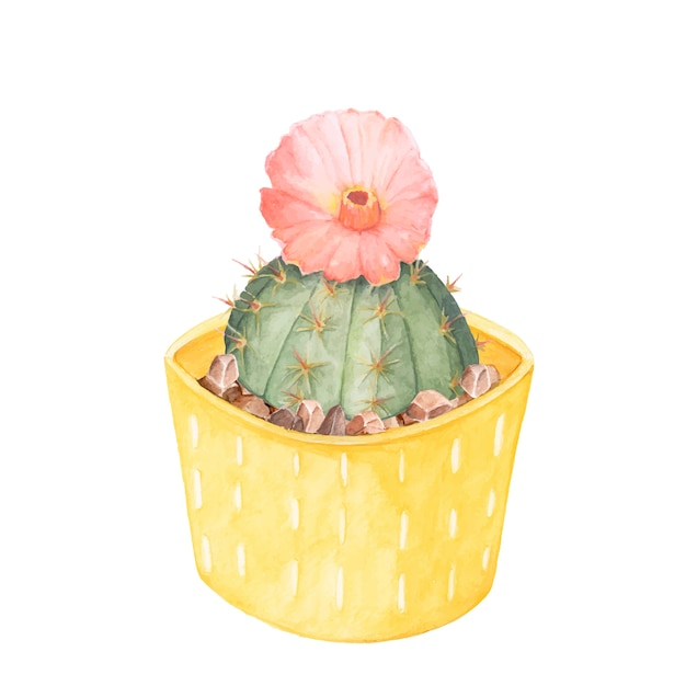 Hand drawn gymnocalycium erinaceum chin cactus in a yellow pot Free Vector