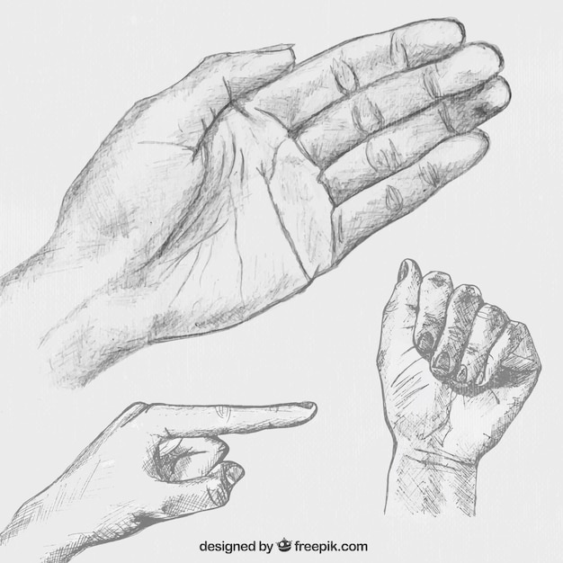 hand drawn hands posing vector free download
