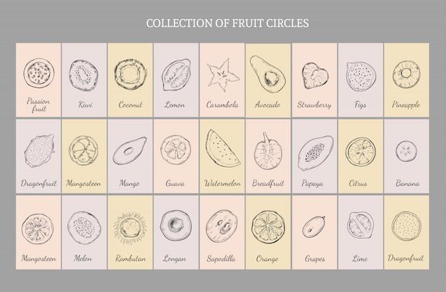 手描きの健康的なフルーツテーブルコンセプト 無料ベクター