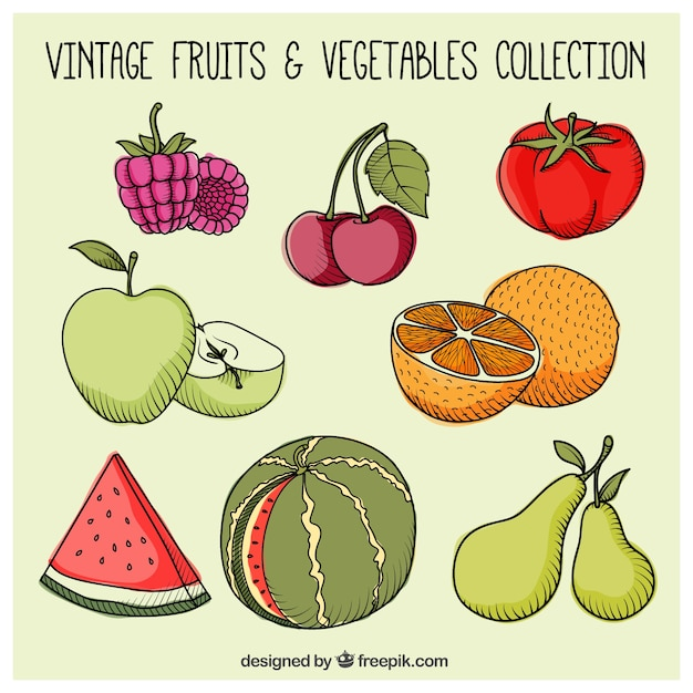 Hand drawn healthy fruits Vector | Free Download