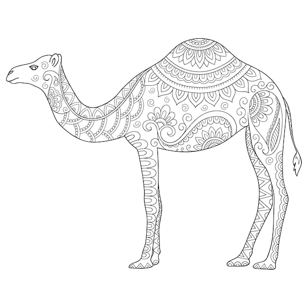 Premium Vector Hand Drawn Illustration Doodle Stylized Animal Camel Coloring Page
