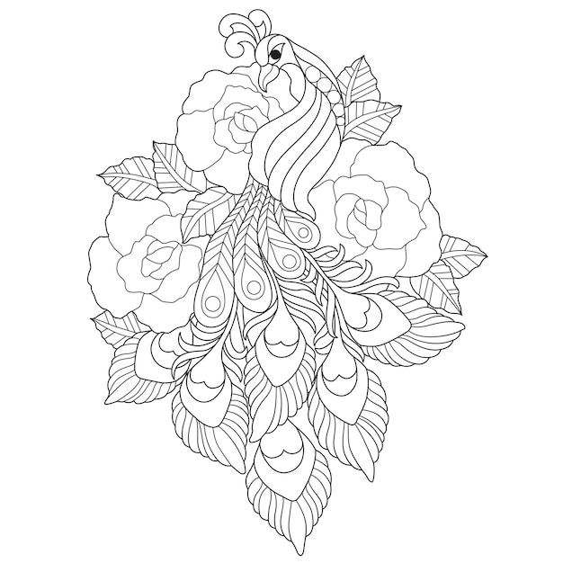 Hand drawn illustration of peacock in zentangle style Premium Vector