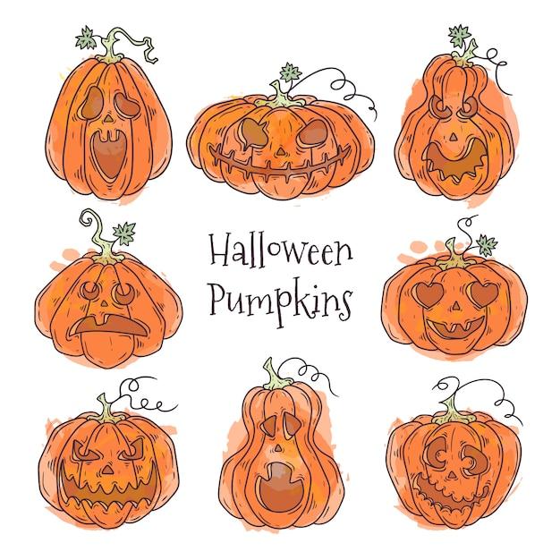 Hand drawn illustrations of realistic pumpkin for halloween Premium Vector